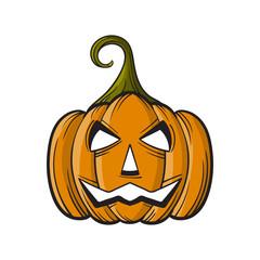 cartoon Halloween Pumpkin isolated on white background