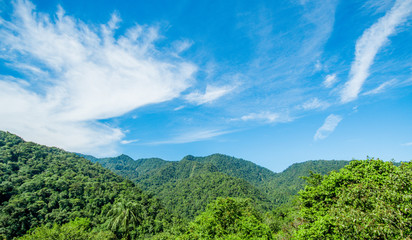 Beautiful landscape of the forest in Mindo, in gorgeous blue sky