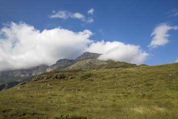 Горный пейзаж. Красивый вид на живописное ущелье, панорама горной местности, белые облака на синем небе. Природа и горы Северного Кавказа