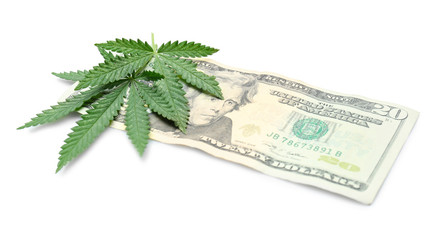 Green cannabis leaves and dollar on white background. Marijuana business concept