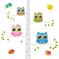 Owls on a tree with birds