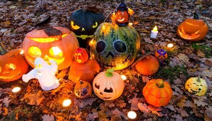 Halloween pumpkins in the garden