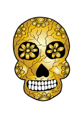 Skull with flower ornament. Hand drawing illustration.