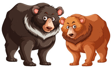 Black and brown bears