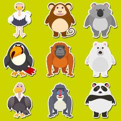 Sticker design for cute animals