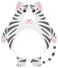 White tiger with round body