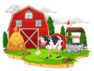 Scene with farm animals on the farm