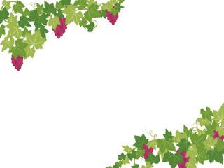 ブドウのフレーム素材