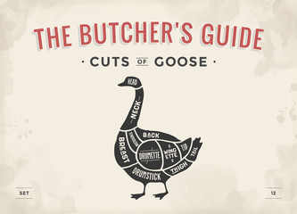 Cut of meat set. Poster Butcher diagram, scheme - Goose. Vintage typographic hand-drawn goose silhouette for butcher shop, restaurant menu, graphic design. Meat, poultry theme. Vector Illustration