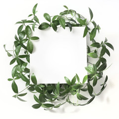 Creative layout made of green leaves with empty space for note on white background. Top view. Nature concept.