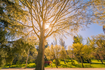 Madrid, Parque del Oeste