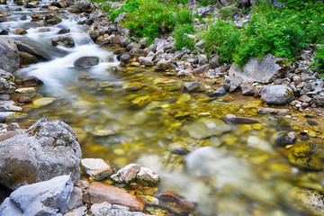 creek in mountain