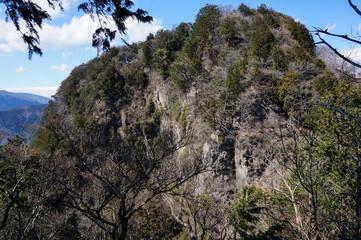 山の岩肌と木々