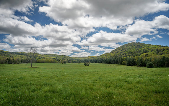 Summer in Green Valley among New England Hills