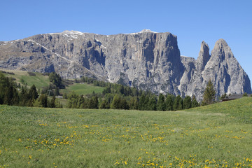 Seiser Alm Blick Richtung Schlern, Südtirol, Italien, Europa