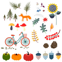 Autumn fall clip art vector illustrations. Forest flowers, leaves, fox and pumpkins on white.