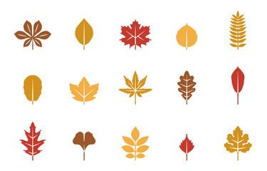 Blätter Herbst & Frühling - Herbstfarben