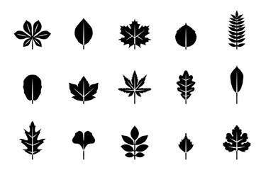 Blätter Herbst & Frühling - Schwarz