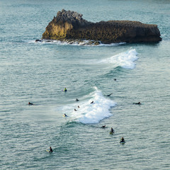 surfers on the wave in Portugal