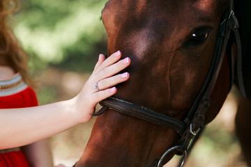Summer day on the farm. Young woman caress horse.