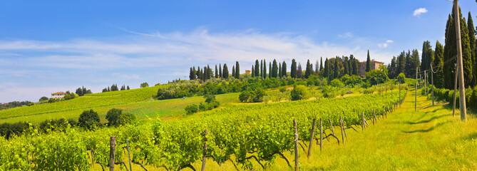Toskana-Panorama, bei Montespertoli Fototapete