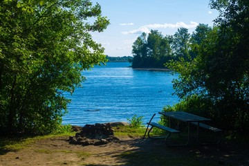 A loon swimming on the St. Lawrence River next to a campsite with a fire pit, picnic table and waterfront at Milles Roches Campground located in Long Sault Ontario Canada