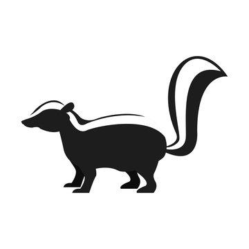 Skunk animal cartoon icon vector illustration graphic design