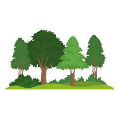Beautiful forest landscape icon vector illustration graphic design