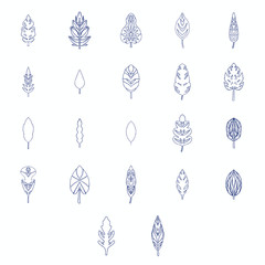 Vector icon of various outline leaves