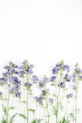Floral pattern with bluebell flower, green leaves, branches on white background. Flat lay, top view. Valentine's background