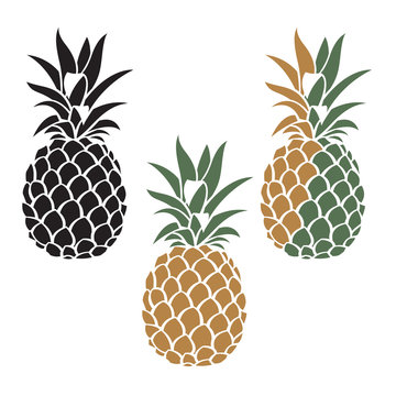 collection of pineapple tropical fruit images