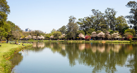 Ibirapuera Park, Sao Paulo