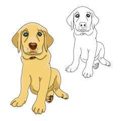 Outline of a puppy on white background, vector illustration