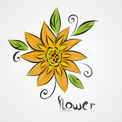 Yellow Sunflower drawing,vector illustration