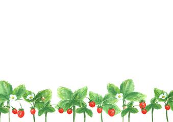 Summer strawberry background