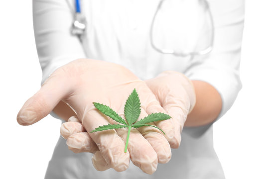 Female doctor with leaf of hemp on white background, closeup. Concept of using hemp in medicine