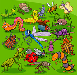 cartoon insects animal characters group