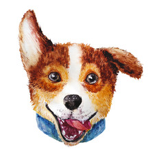 Watercolor artistic corgi dog portrait isolated on white background. Cute pet animal head hand drawn. Corgi puppy. New Year symbol, christmas card, xmas emblem.