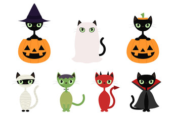 Black cats in Halloween costumes