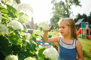 Girl touching hydrangea flower  in garden