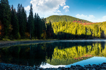 beautiful autumnal landscape with misty morning on the forest lake in mountains