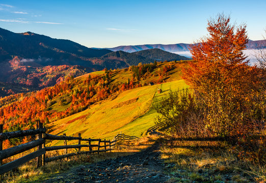 wooden fence through rural fields on hills in fog. gorgeous mountainous countryside landscape in autumn