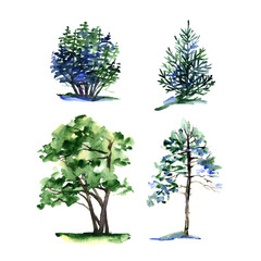 Set of different types watercolor trees.