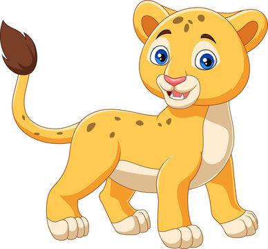 Cartoon baby lion isolated on white background