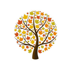 Autumn maple with yellow leaves. Isolated vector illustration on white background