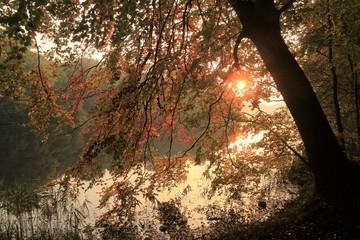 malerische Lichtstimmung am Ukleisee im Herbst, Trauerkarte, Abschied