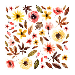 Watercolor floral elements isolated on white background.