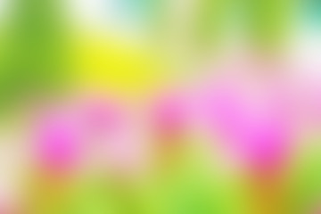 Abstract blur pink green yellow color background wallpaper brochure banner for your design or text