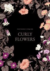 Цветы. Вьющиеся растения. Векторная открытка в стиле винтаж. Рамка с цветочным узором.