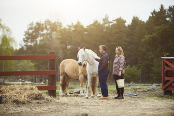 Side view of farmer stroking horse while standing by woman on field